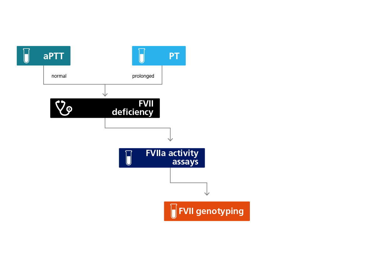 Algorithm for the laboratory diagnosis of FVII deficiency